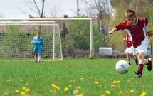 Budowa boiska. Jaką trawę wybrać, aby spełniała wymagania małych piłkarzy?