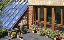 Lato na balkonie. Jak pielęgnować kwiaty doniczkowe?